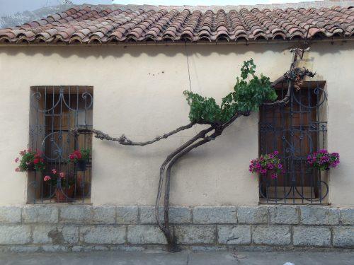 Irregular Properties in Spain